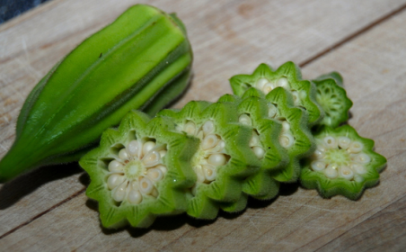 Manfaat Kandungan Gizi Sayuran Okra Bagi Kesehatan